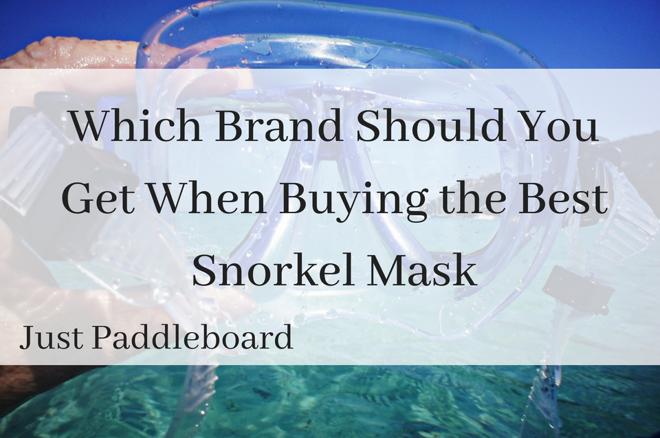 Which Brand Should You Get When Buying the Best Snorkel Mask