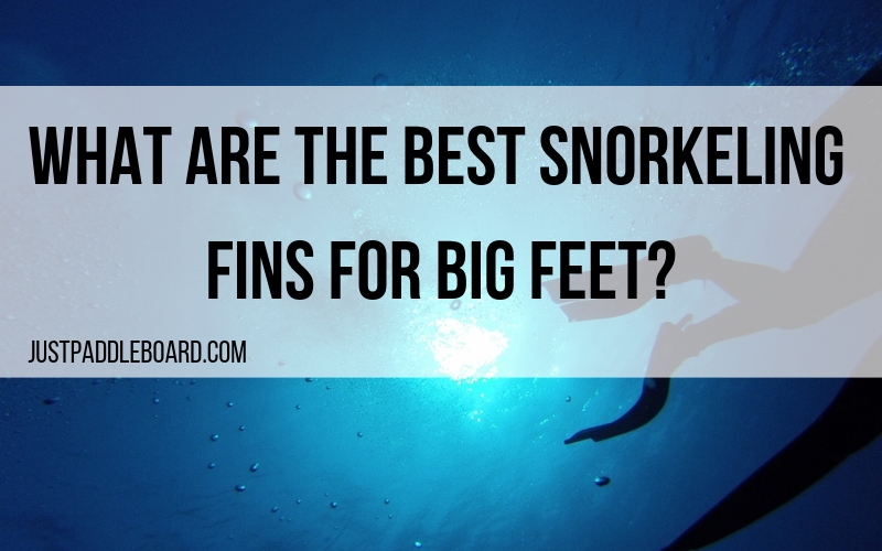 What are the Best Snorkeling Fins for Big Feet?